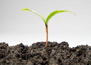 如何利用土壤肥料检测仪为农业生产赋能