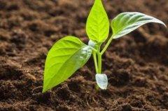 如何帮助农业生产者实现科学施肥?